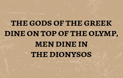 home-quote-dionysos-Flensburg-eng-y1
